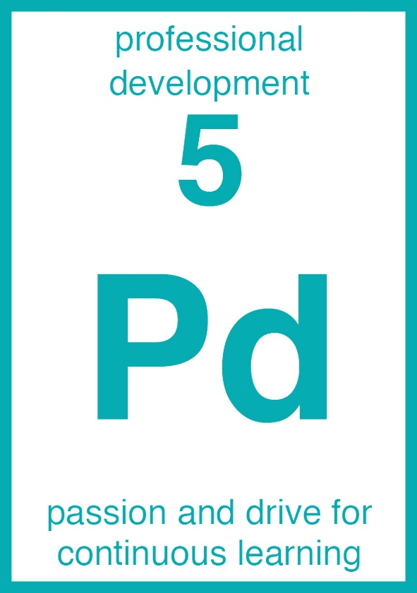 Professional Development Core Element